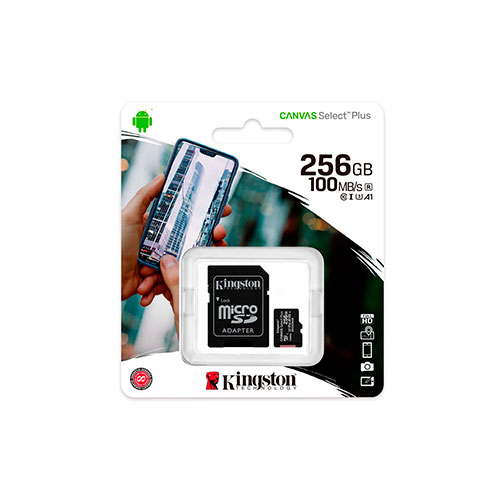 SDCS2-256GB