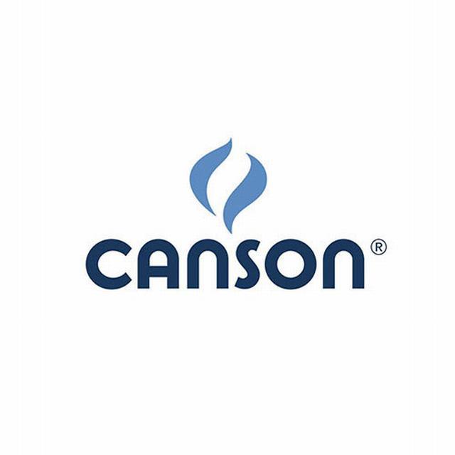 C321 CANSON                                                         PAPEL COLOR MI-TEINTES 160GRS 50 X 65CM